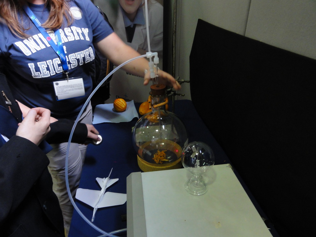 Making (secondary organic) aerosol from an orange